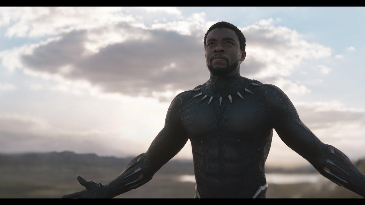 T'Challa/Black Panther Unmasked (Chadwick Boseman)